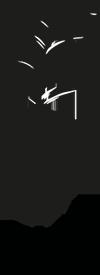 Librera Flappers Logo